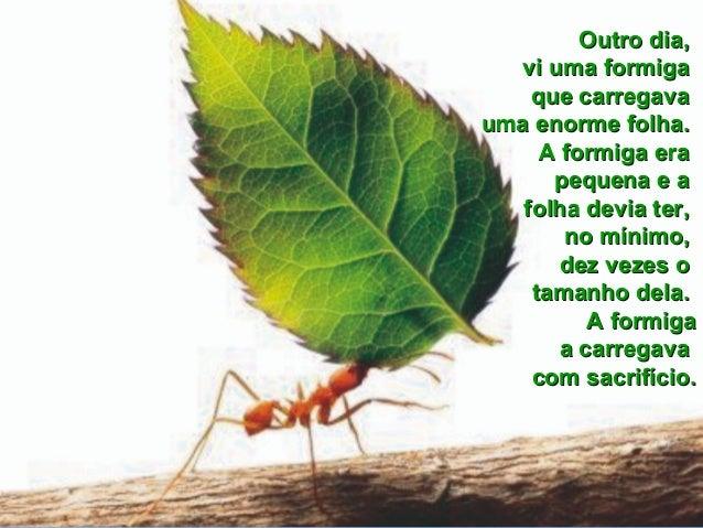 Aprendendo a orar_com_as_formigas Slide 2