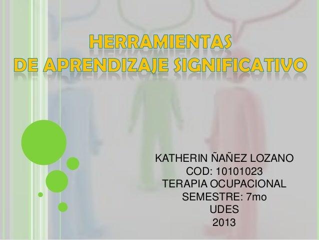 KATHERIN ÑAÑEZ LOZANO     COD: 10101023 TERAPIA OCUPACIONAL    SEMESTRE: 7mo         UDES         2013