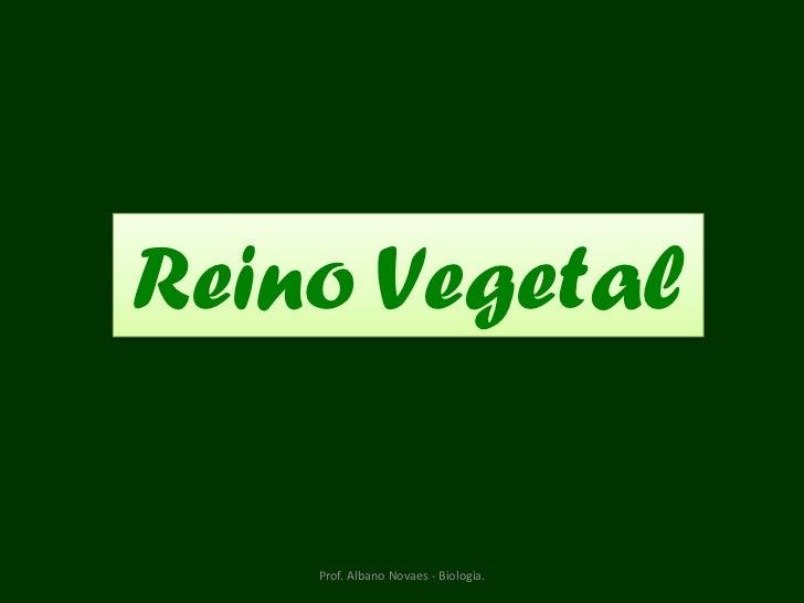 Reino Vegetal    Prof. Albano Novaes - Biologia.