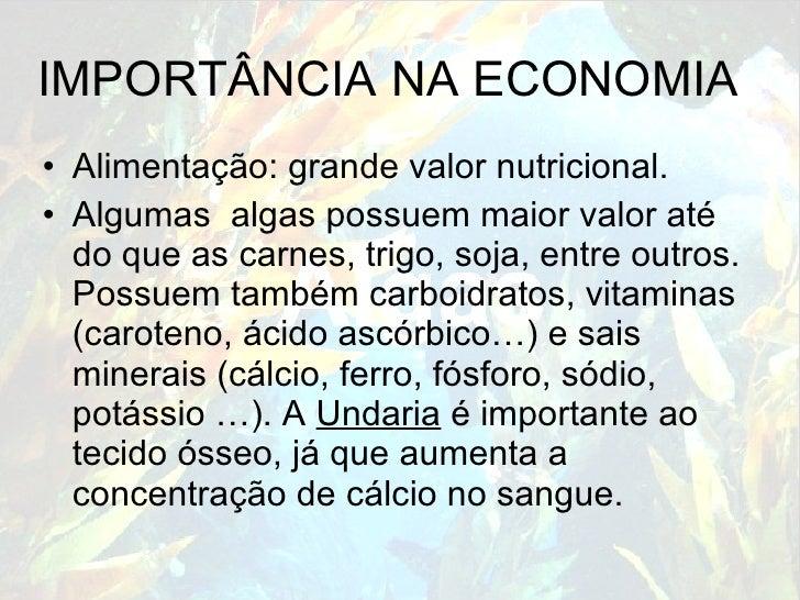IMPORTÂNCIA NA ECONOMIA <ul><li>Alimentação: grande valor nutricional.  </li></ul><ul><li>Algumas  algas possuem maior val...