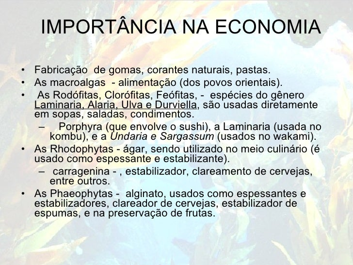 IMPORTÂNCIA NA ECONOMIA <ul><li>Fabricação  de gomas, corantes naturais, pastas. </li></ul><ul><li>As macroalgas  - alimen...