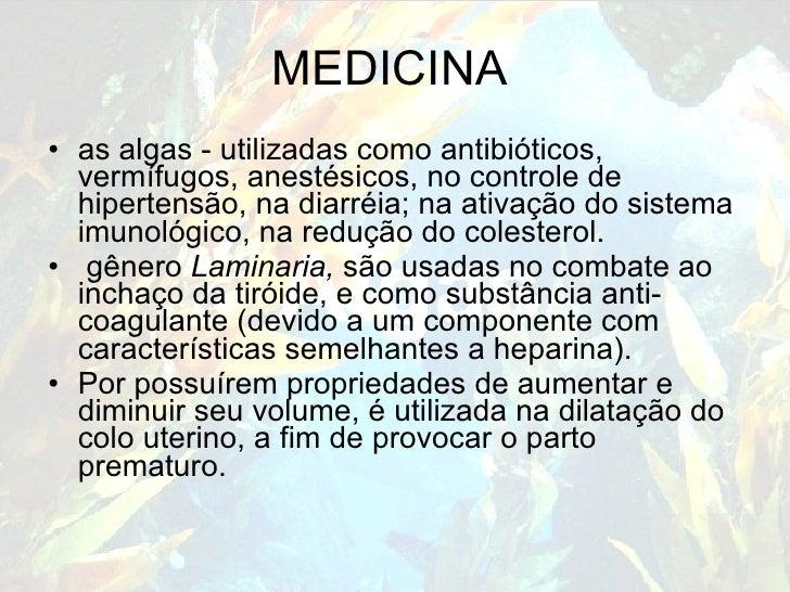 MEDICINA <ul><li>as algas - utilizadas como antibióticos, vermífugos, anestésicos, no controle de hipertensão, na diarréia...