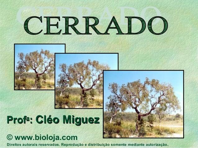 ProfProfaa :: Cléo MiguezCléo Miguez © www.bioloja.com Direitos autorais reservados. Reprodução e distribuição somente med...