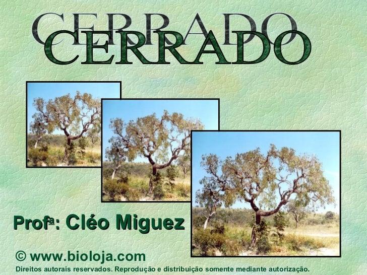 CERRADO Prof a :  Cléo Miguez ©  www.bioloja.com Direitos autorais reservados. Reprodução e distribuição somente mediante ...