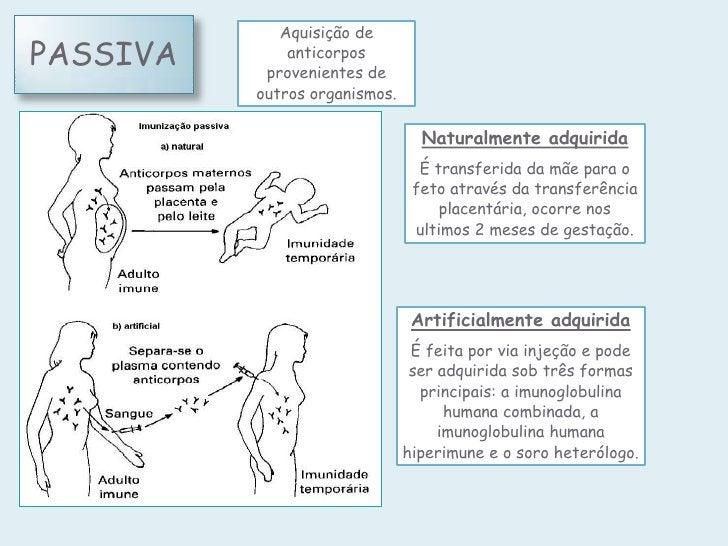 Aquisição dePASSIVA       anticorpos           provenientes de          outros organismos.                                ...