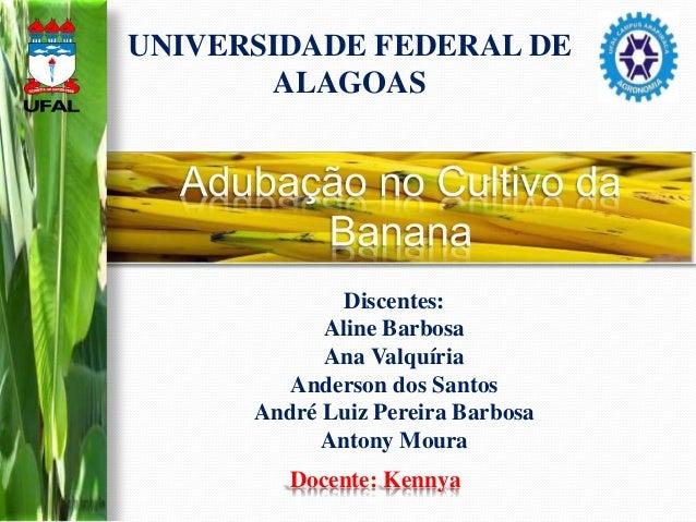 Discentes: Aline Barbosa Ana Valquíria Anderson dos Santos André Luiz Pereira Barbosa Antony Moura Docente: Kennya UNIVERS...