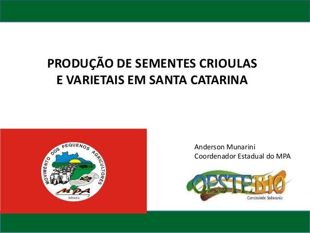 PRODUÇÃO DE SEMENTES CRIOULAS E VARIETAIS EM SANTA CATARINA  Anderson Munarini Coordenador Estadual do MPA