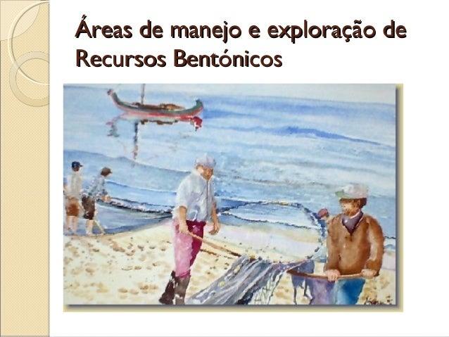 Áreas de manejo e exploração deRecursos Bentónicos
