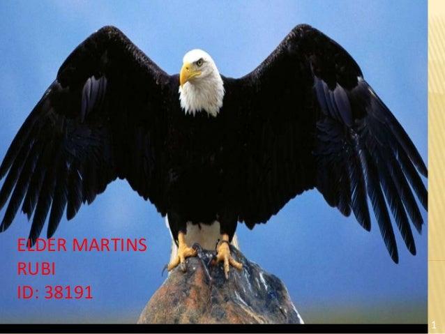 ELDER MARTINSRUBIID: 38191                1