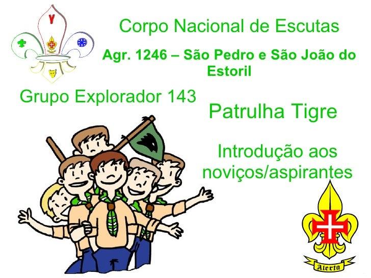Corpo Nacional de Escutas Agr. 1246 – São Pedro e São João do Estoril Patrulha Tigre Introdução aos noviços/aspirantes Gru...