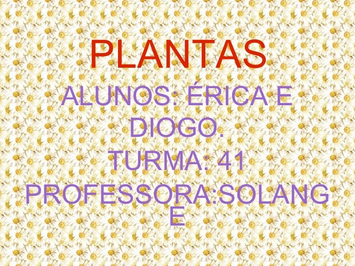 PLANTAS ALUNOS: ÉRICA E DIOGO. TURMA: 41 PROFESSORA:SOLANGE