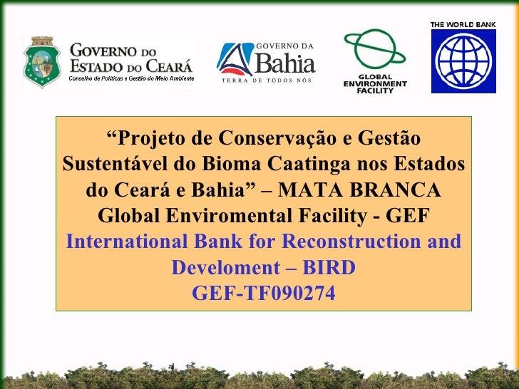 """"""" Projeto de Conservação e Gestão Sustentável do Bioma Caatinga nos Estados do Ceará e Bahia"""" – MATA BRANCA Global Envirom..."""