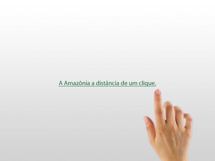 Olá,Bruno Donato Lopes  , aka Bruno Roots.Web Designer Senior do   Portal Amazônia.       @brunoroots