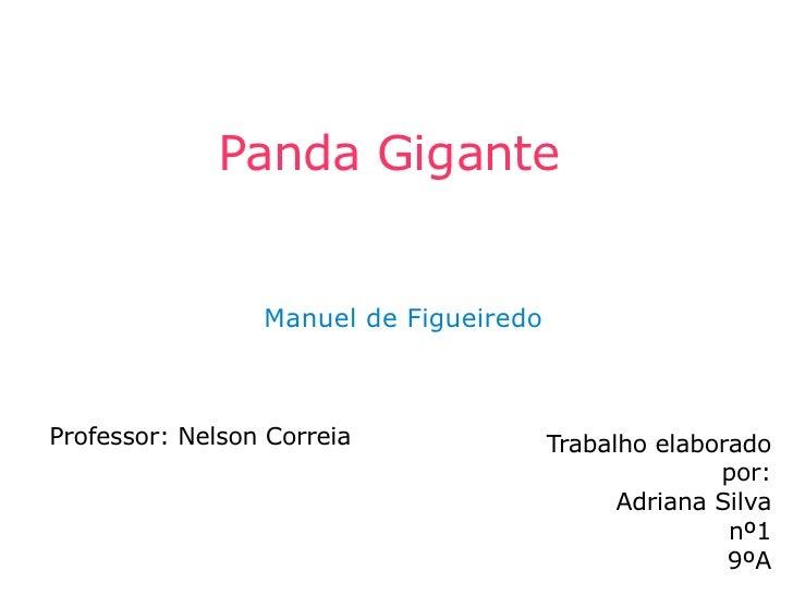 Panda Gigante Professor: Nelson Correia Trabalho elaborado por: Adriana Silva nº1 9ºA Manuel de Figueiredo