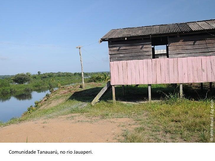 © WWF-Brasil / Zig Koch Comunidade Tanauarú, no rio Jauaperi.