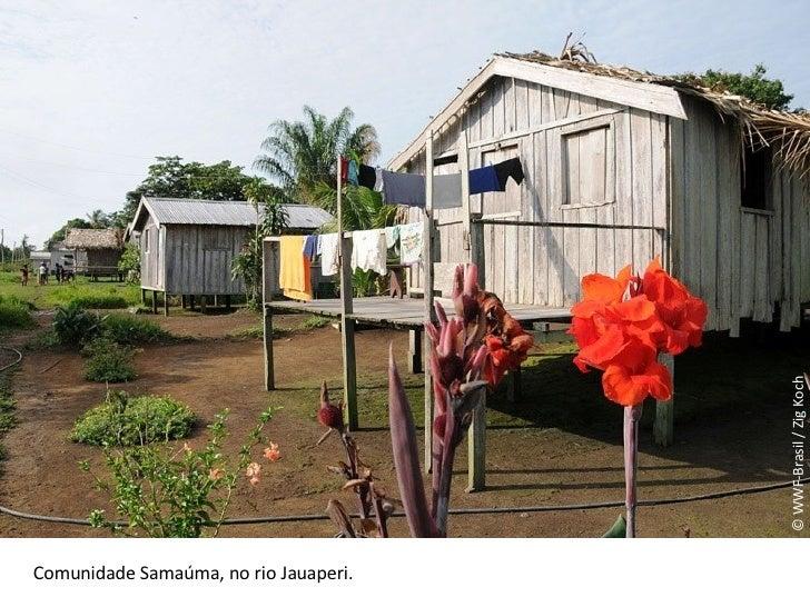 © WWF-Brasil / Zig Koch Comunidade Samaúma, no rio Jauaperi.