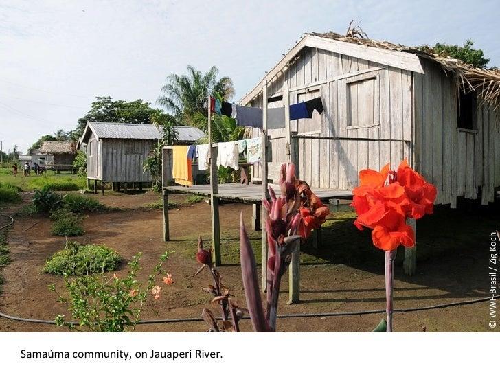 © WWF-Brasil / Zig Koch Samaúma community, on Jauaperi River .