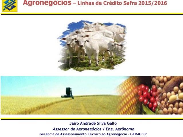 Agronegócios – Linhas de Crédito Safra 2015/2016 Jairo Andrade Silva Gallo Assessor de Agronegócios / Eng. Agrônomo Gerênc...