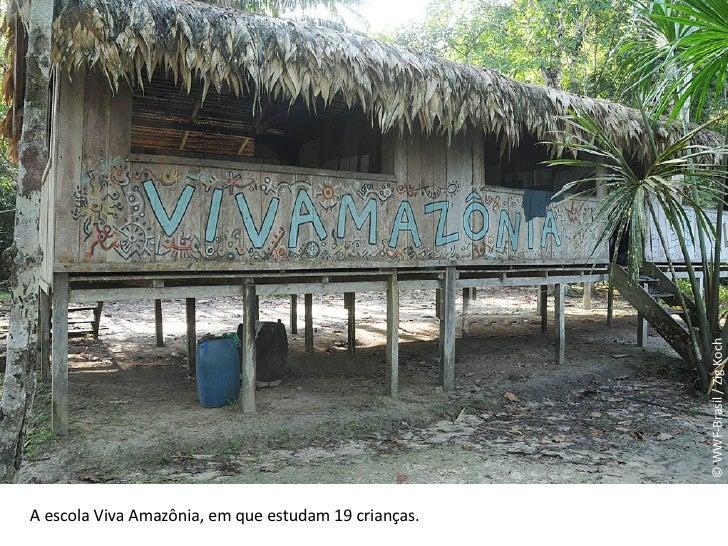 © WWF-Brasil / Zig Koch A escola Viva Amazônia, em que estudam 19 crianças.