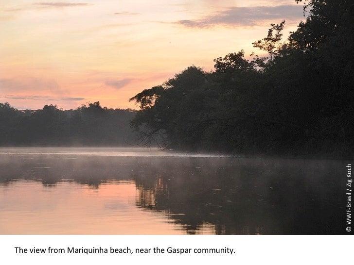 © WWF-Brasil / Zig Koch The view from Mariquinha beach, near the Gaspar community .