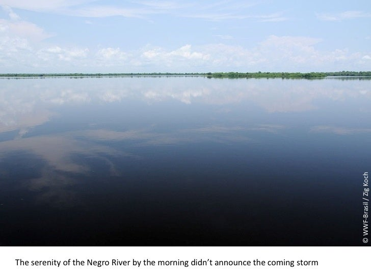 © WWF-Brasil / Zig Koch The serenity of the Negro River by the morning didn't announce the coming storm