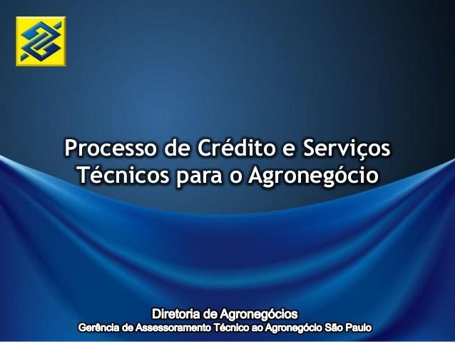 Processo de Crédito e Serviços Técnicos para o Agronegócio