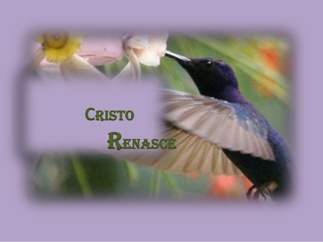 CRISTO RENASCE