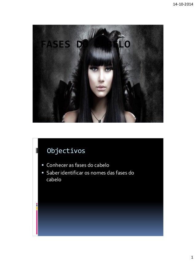 14-10-2014  1  FASES DO CABELO  Objectivos  Conhecer as fases do cabelo  Saber identificar os nomes das fases do cabelo