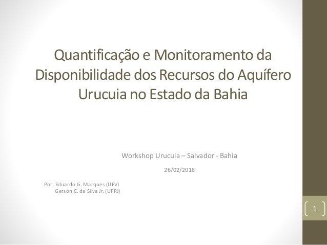 Quantificação e Monitoramento da Disponibilidade dos Recursos do Aquífero Urucuia no Estado da Bahia Workshop Urucuia – Sa...
