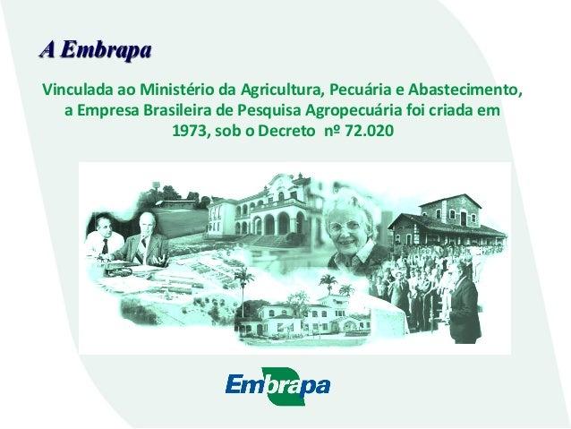 A Embrapa Vinculada  ao  Ministério  da  Agricultura,  Pecuária  e  Abastecimento,     a  Empresa  B...
