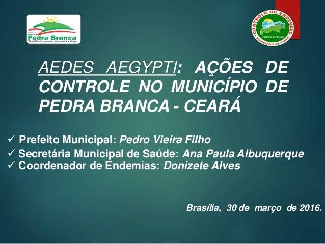 AEDES AEGYPTI: AÇÕES DE CONTROLE NO MUNICÍPIO DE PEDRA BRANCA - CEARÁ  Prefeito Municipal: Pedro Vieira Filho  Secretári...