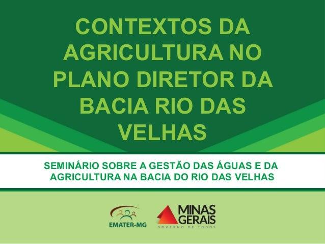 CONTEXTOS DA AGRICULTURA NO PLANO DIRETOR DA BACIA RIO DAS VELHAS SEMINÁRIO SOBRE A GESTÃO DAS ÁGUAS E DA AGRICULTURA NA B...