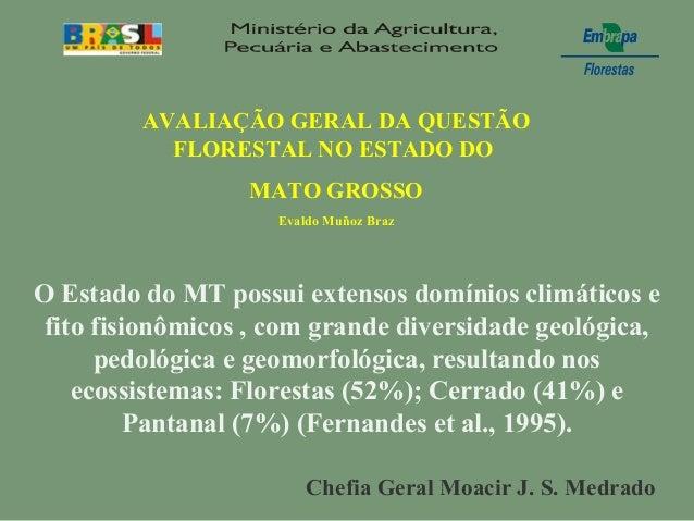 AVALIAÇÃO GERAL DA QUESTÃOFLORESTAL NO ESTADO DOMATO GROSSOEvaldo Muñoz BrazO Estado do MT possui extensos domínios climát...
