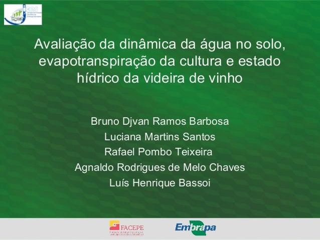 Avaliação da dinâmica da água no solo, evapotranspiração da cultura e estado hídrico da videira de vinho Bruno Djvan Ramos...