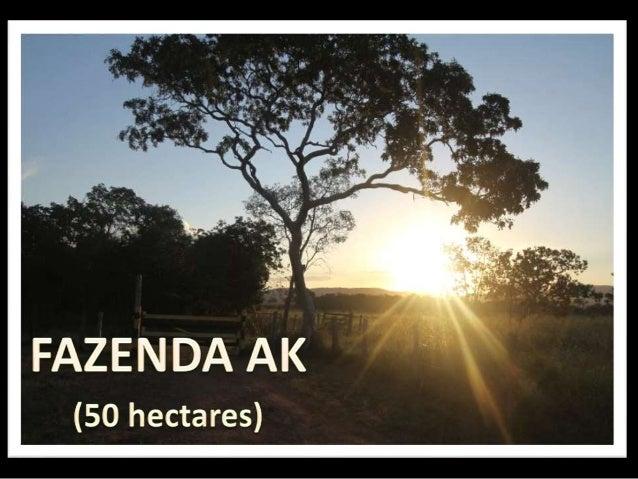ESTRADA Estrada de chão (28km), sem buracos, perfeita, com bela vista para vales e plantações Entrada da fazenda rodeada p...
