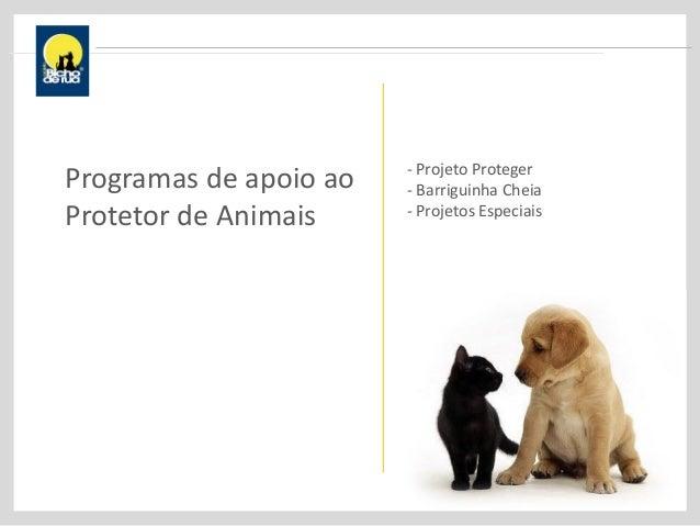 Programas de apoio ao Protetor de Animais - Projeto Proteger - Barriguinha Cheia - Projetos Especiais