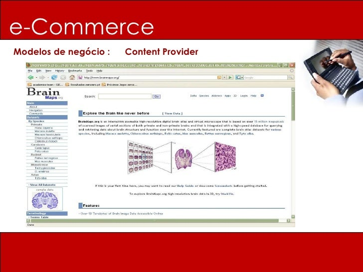 e-Commerce Modelos de negócio :  Content Provider
