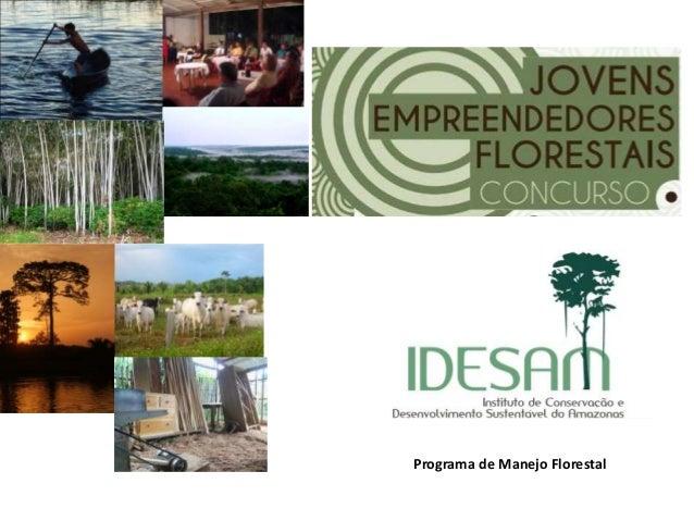 Programa de Manejo Florestal