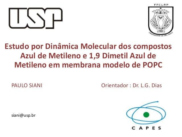 Estudo por Dinâmica Molecular dos compostos Azul de Metileno e 1,9 Dimetil Azul de Metileno em membrana modelo de POPC PAU...