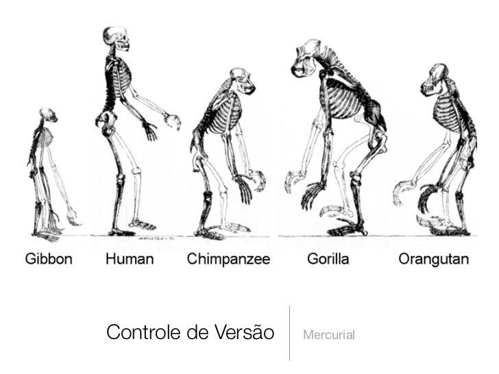 Controle de Versão   Mercurial