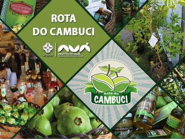 . Fruto nativo da Mata Atlântica, endêmico da Serra do Mar de São Paulo. O CAMBUCI . Consumido por guaranis e bandeirantes...