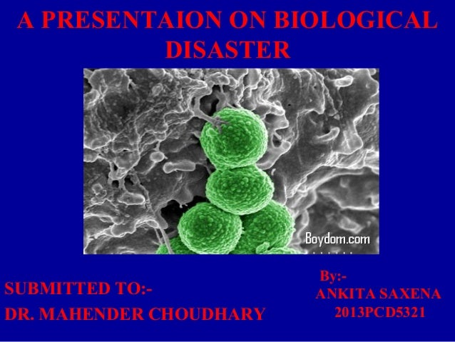 A PRESENTAION ON BIOLOGICAL  DISASTER  SUBMITTED TO:-  DR. MAHENDER CHOUDHARY  By:-  ANKITA SAXENA  2013PCD5321
