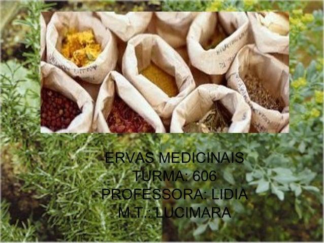 ERVAS MEDICINAIS TURMA: 606 PROFESSORA: LIDIA M.T.: LUCIMARA