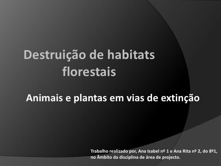 Destruição de habitats florestais<br />Animais e plantas em vias de extinção<br />Trabalho realizado por, Ana Isabel nº 1 ...