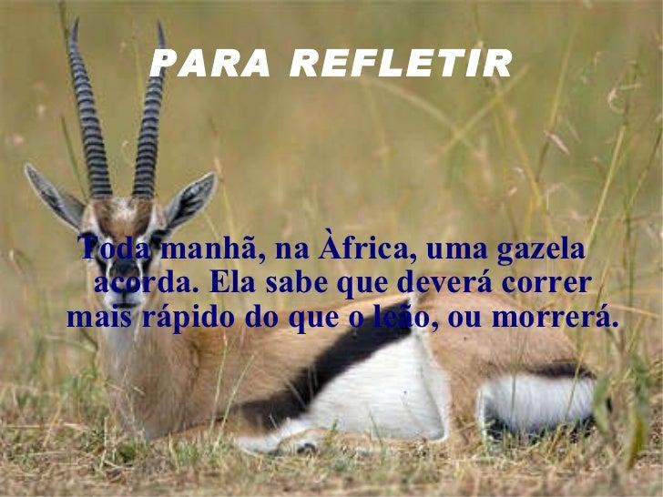 PARA REFLETIR Toda manhã, na Àfrica, uma gazela acorda. Ela sabe que deverá correr mais rápido do que o leão, ou morrerá.