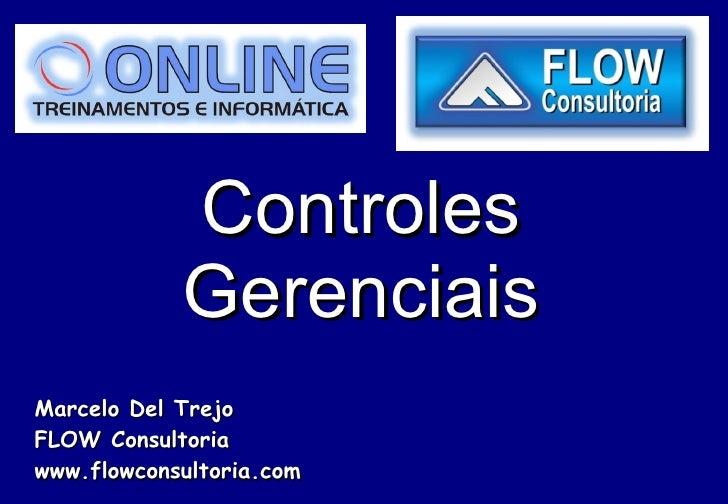 Controles Gerenciais Marcelo Del Trejo FLOW Consultoria www.flowconsultoria.com
