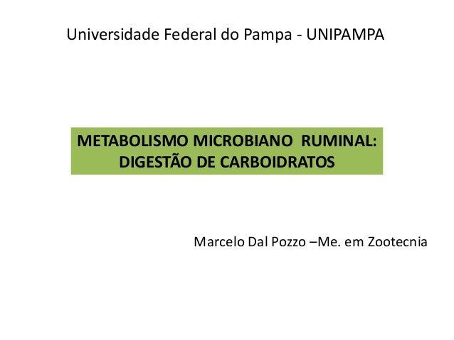 METABOLISMO MICROBIANO RUMINAL: DIGESTÃO DE CARBOIDRATOS Marcelo Dal Pozzo –Me. em Zootecnia Universidade Federal do Pampa...