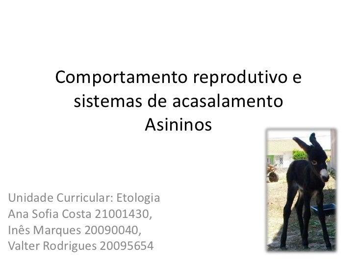 Comportamento reprodutivo e          sistemas de acasalamento                  AsininosUnidade Curricular: EtologiaAna Sof...