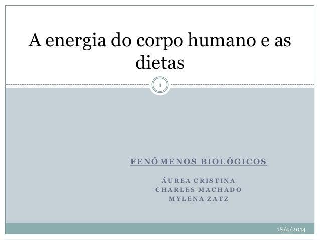 FENÔMENOS BIOLÓGICOS Á U R E A C R I S T I N A C H A R L E S M A C H A D O M Y L E N A Z A T Z A energia do corpo humano e...