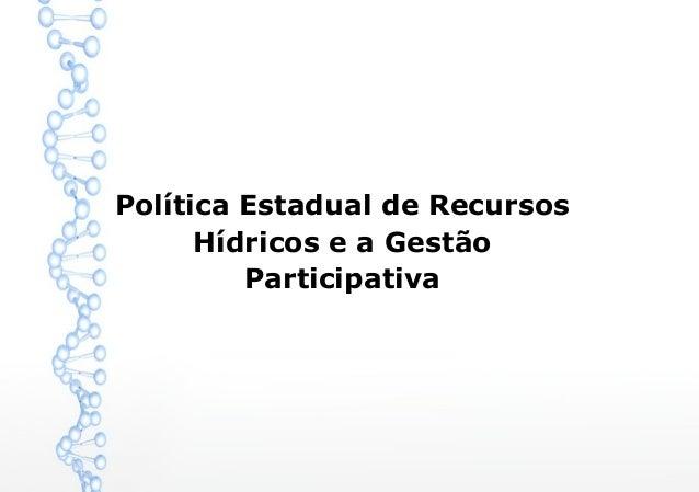 Política Estadual de Recursos Hídricos e a Gestão Participativa